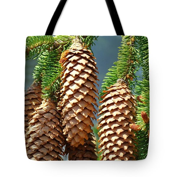 Pine Cones Art Prints Conifer Pine Tree Landscape Baslee Troutman Tote Bag by Baslee Troutman