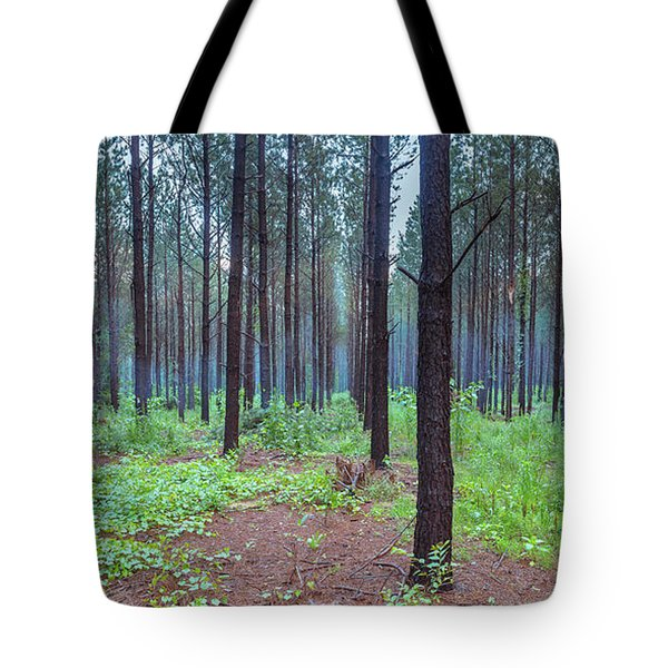 Tote Bag featuring the photograph Pine Grove And Fog In Charlotte Nc Panorama by Ranjay Mitra