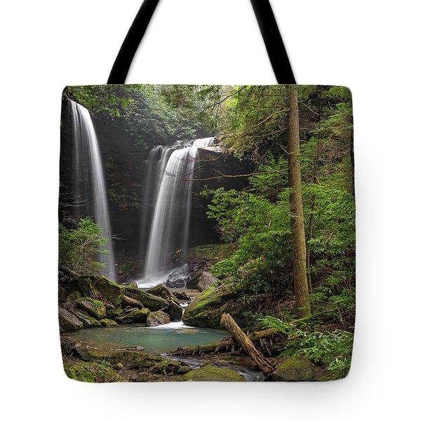 Pine Island Falls Tote Bag