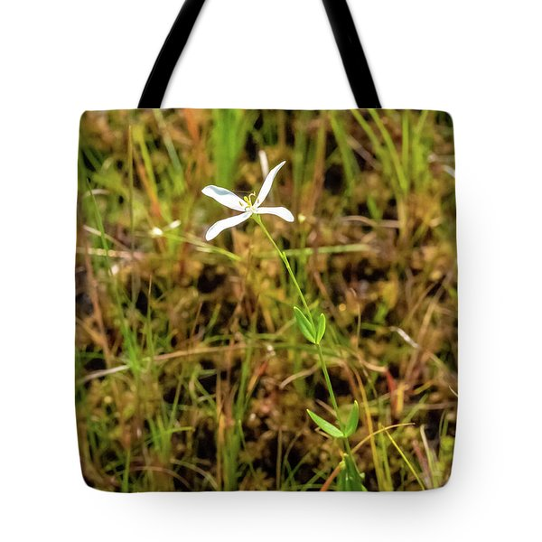 Tote Bag featuring the photograph Pine Lands Endangered Plant by Louis Dallara
