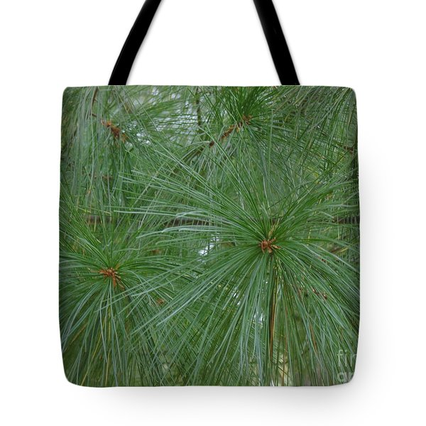 Pine Needles Tote Bag by Daun Soden-Greene