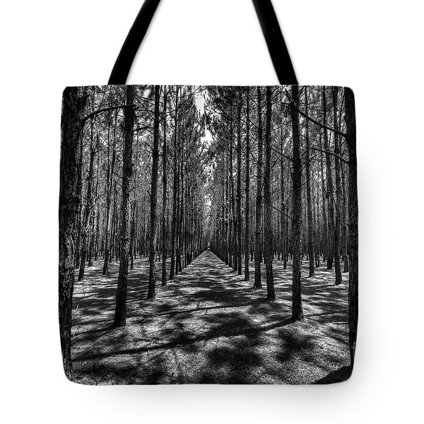 Tote Bag featuring the photograph Pine Plantation Wide by Tommy Patterson