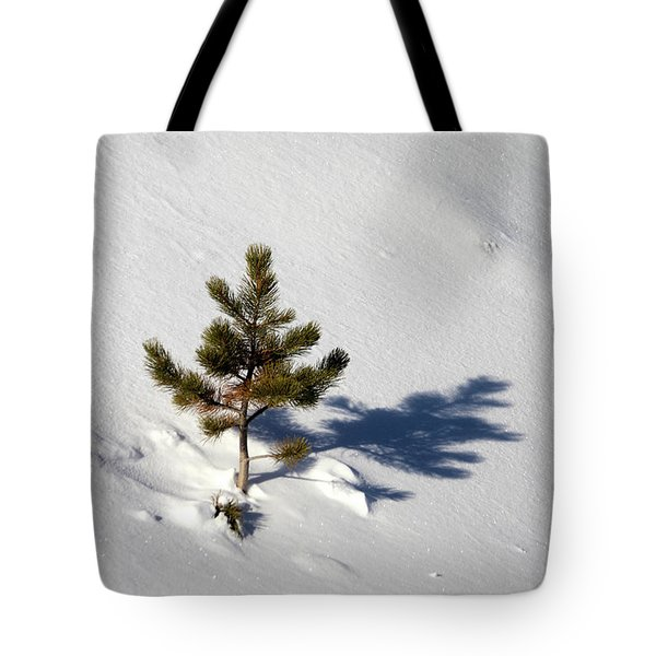 Tote Bag featuring the photograph Pine Shadow by Shane Bechler