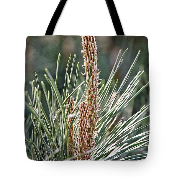 Pine Shoots Tote Bag