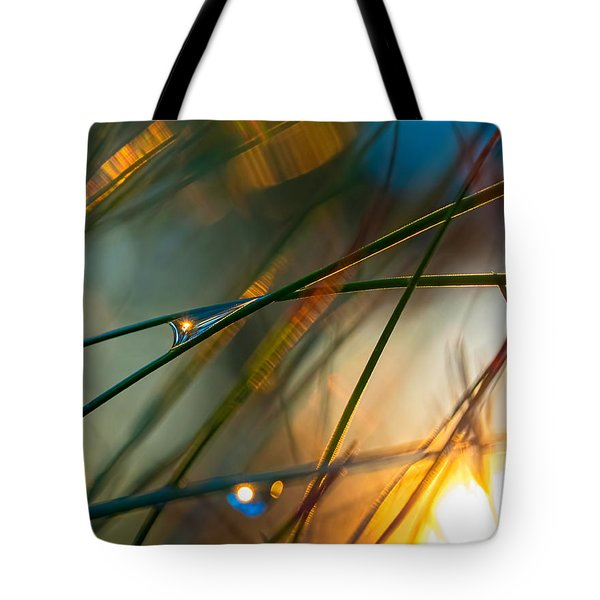 Pine Needle Sunset Tote Bag