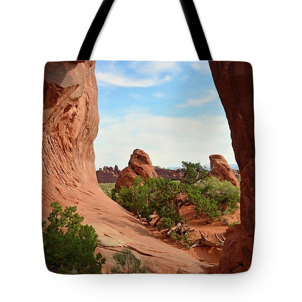 Tote Bag featuring the photograph Pine Tree Arch In Utah 02 by Bruce Gourley