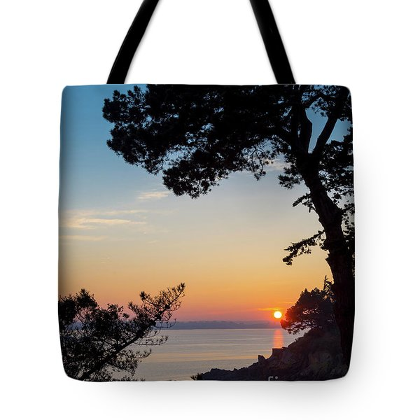 Tote Bag featuring the photograph Pine Tree by Delphimages Photo Creations