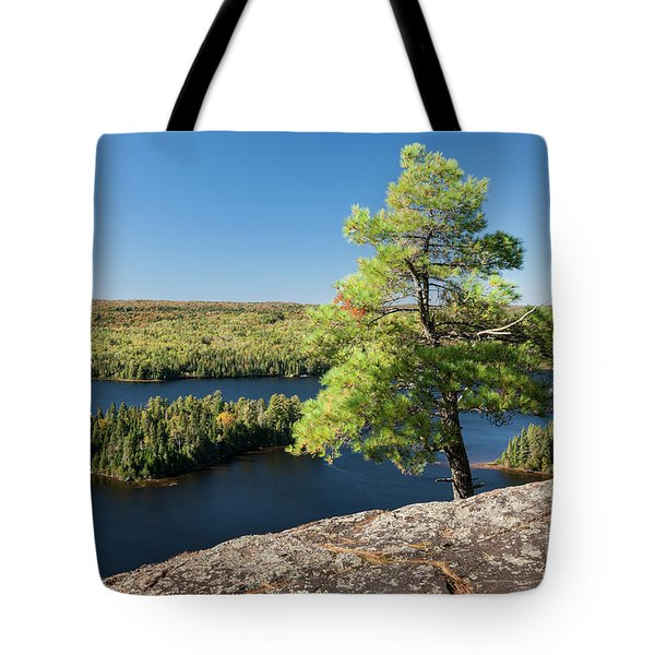 Tote Bag featuring the photograph Pine Tree With A View by Elena Elisseeva
