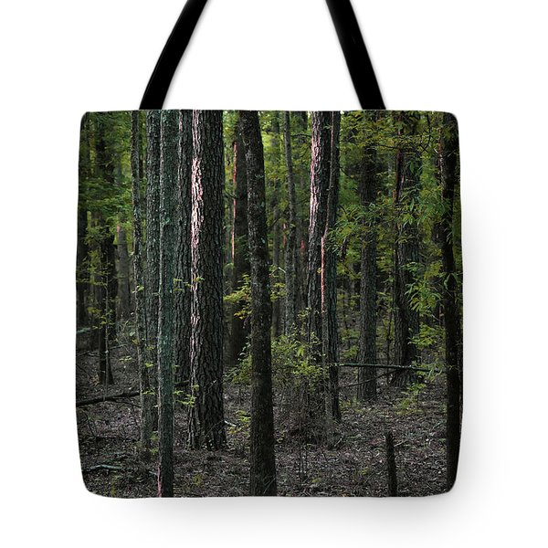 Tote Bag featuring the photograph Pine Wood Sunrise by Skip Willits
