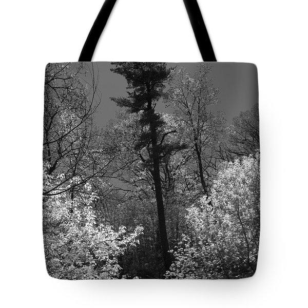 Pineing Away Tote Bag
