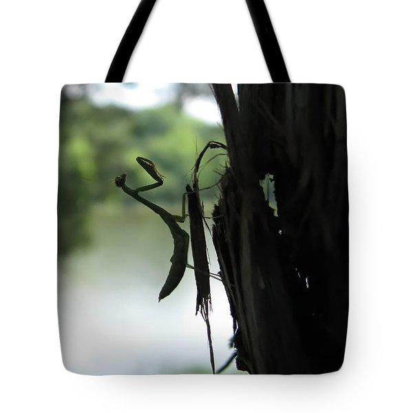 Pines And Prayers Tote Bag by Misha Bean