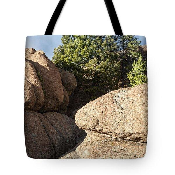 Pines In Granite Tote Bag