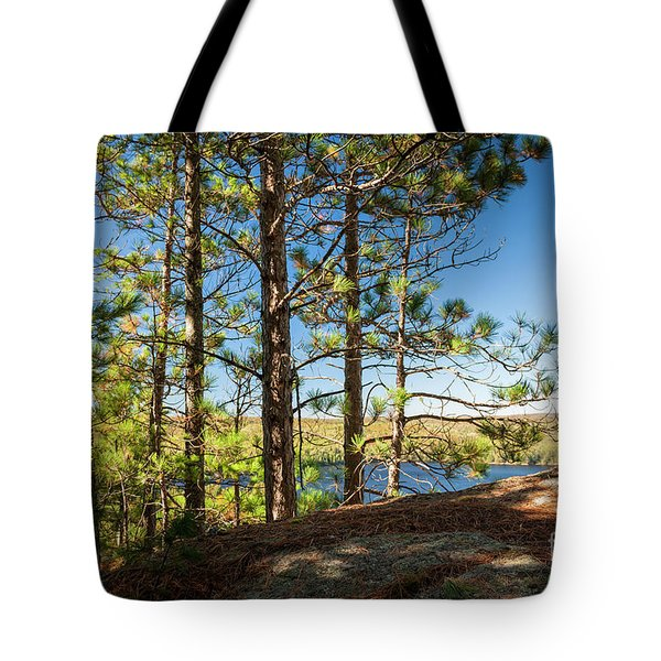 Tote Bag featuring the photograph Pines On Sunny Cliff by Elena Elisseeva