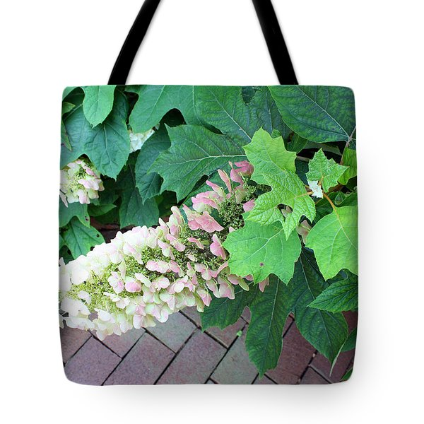 Tote Bag featuring the photograph Pink And Cream  by Ellen Tully