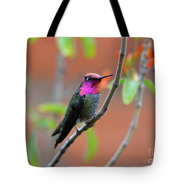 Pink And Gold Anna's Hummingbird Tote Bag