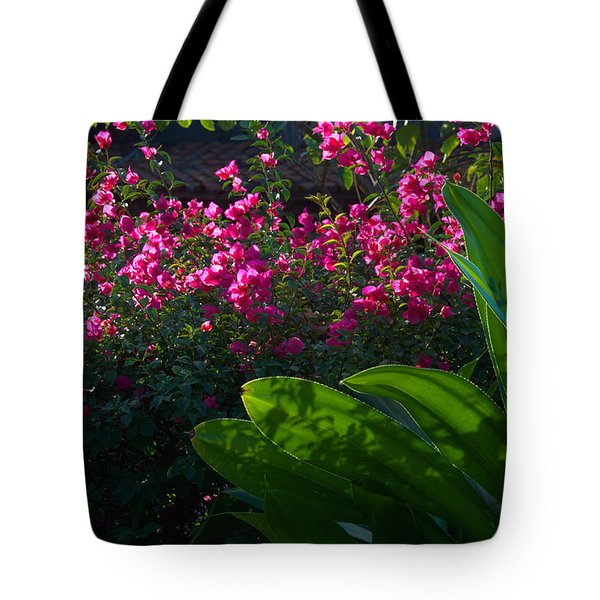 Tote Bag featuring the photograph Pink And Green by Jim Walls PhotoArtist