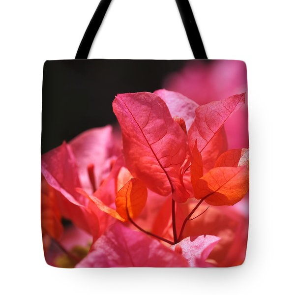 Pink And Orange Bougainvillea Tote Bag