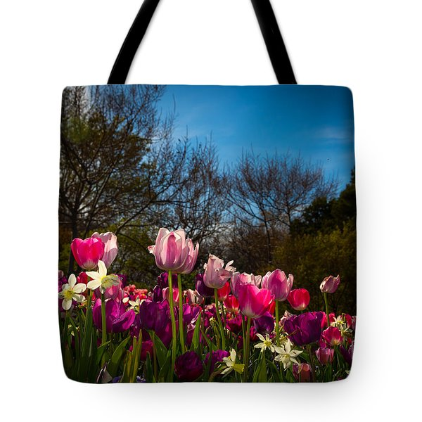 Pink And Purple Tulips Tote Bag