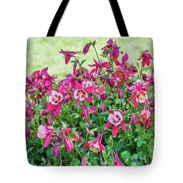 Tote Bag featuring the photograph Pink And White Columbine by Sue Smith