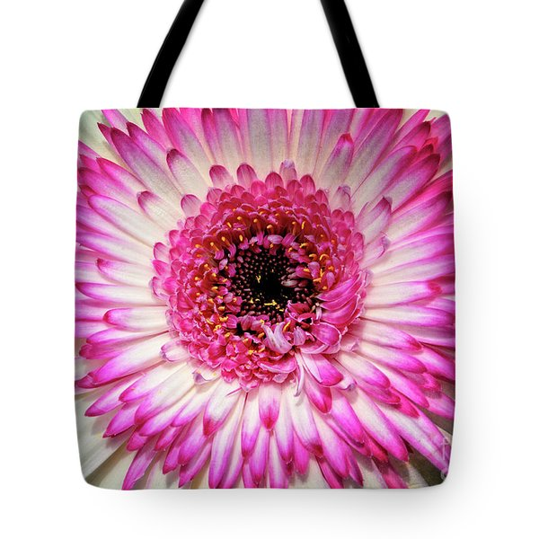 Pink And White Gerbera Daisy Tote Bag by Jim and Emily Bush