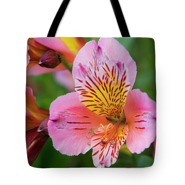 Pink And Yellow Flora Tote Bag