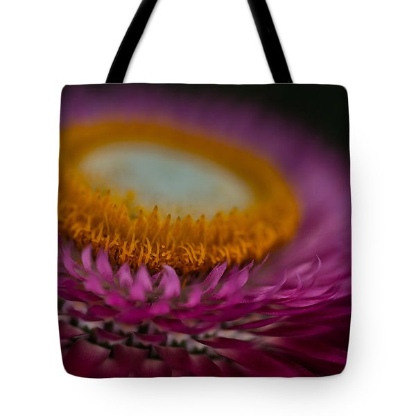 Pink And Yellow Strawflower Close-up Tote Bag