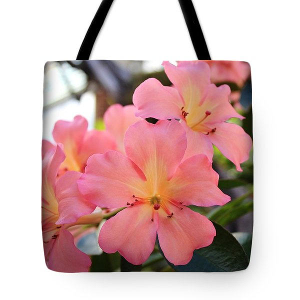 Pink And Yellow Vireya Tote Bag