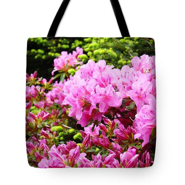 Pink Azalea Flowers Landscape 11 Art Prints Canvas Artwork Framed Art Cards Tote Bag by Baslee Troutman