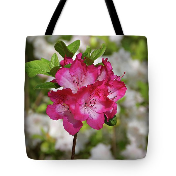 Tote Bag featuring the photograph Pink Azalea by Sandy Keeton