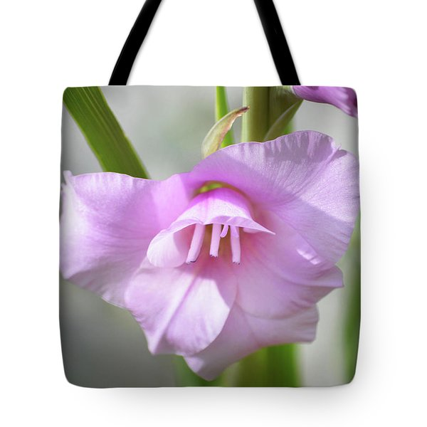 Tote Bag featuring the photograph Pink Blush by Terence Davis