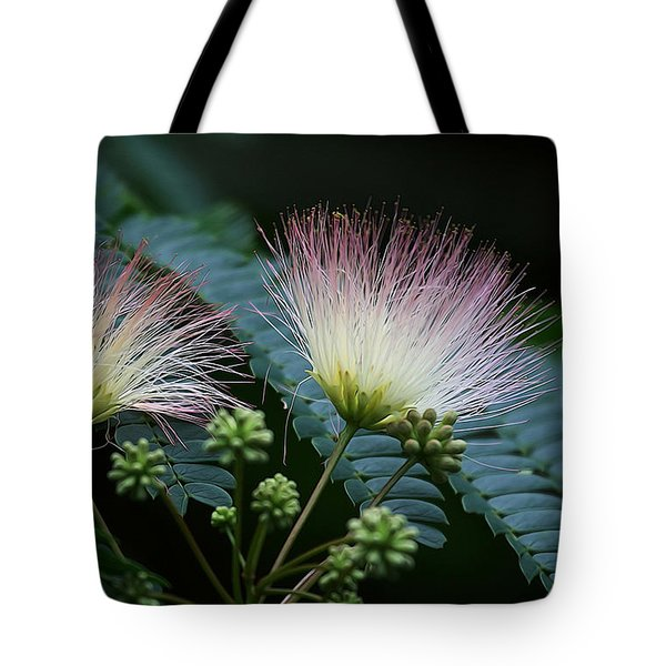 Pink Mimosa  Tote Bag by Yvonne Wright