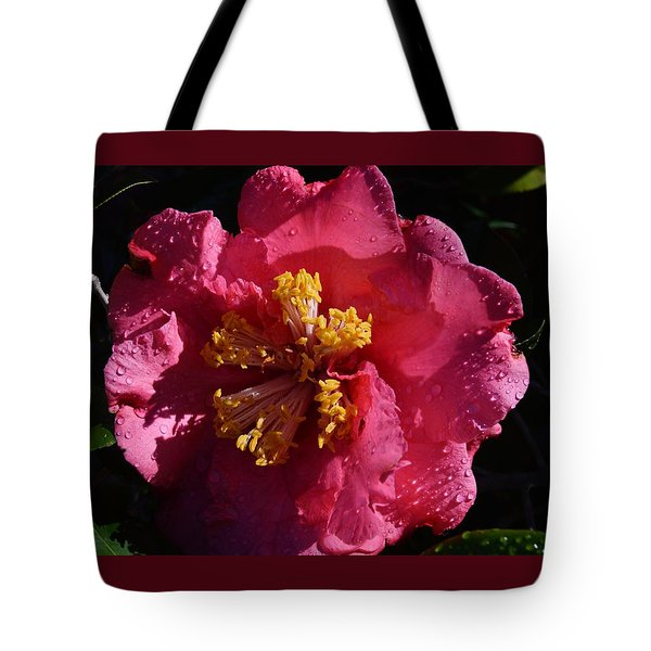 Pink Camillia With Raindrops Tote Bag