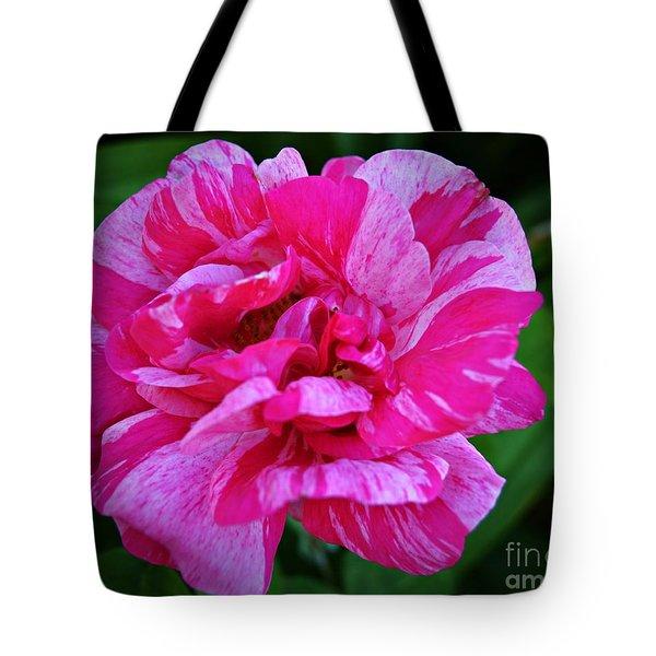 Pink Candy Stripe Rose Tote Bag