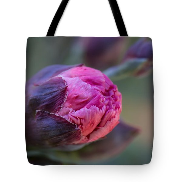 Pink Carnation Bud Close-up Tote Bag