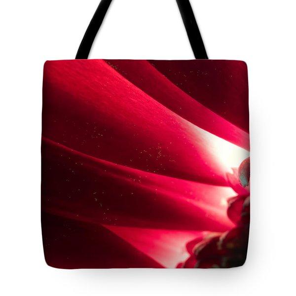 Pink Chrysanthemum Flower Petals  In Macro Canvas Close-up Tote Bag by John Williams