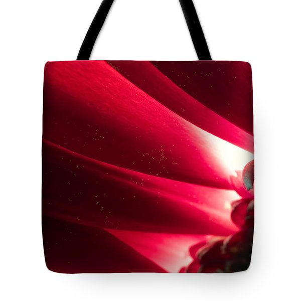 Pink Chrysanthemum Flower Petals  In Macro Canvas Close-up Tote Bag