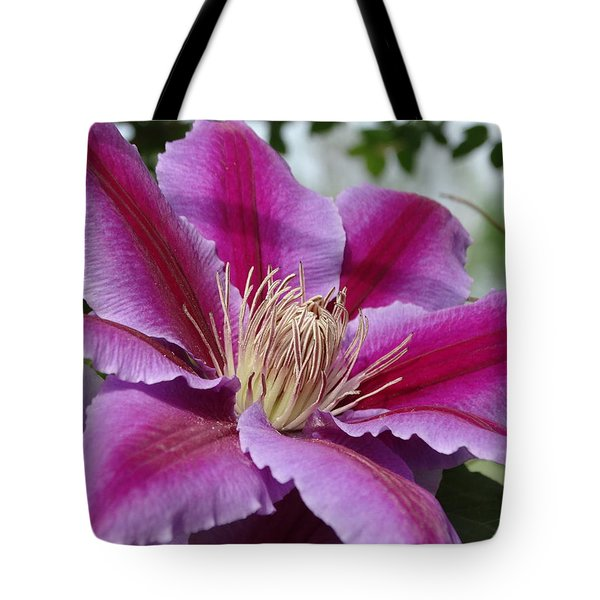 Pink Clematis Vine Tote Bag by Rebecca Overton