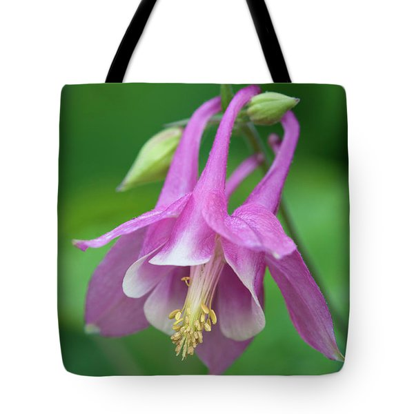 Tote Bag featuring the photograph Pink Columbine - D010096 by Daniel Dempster