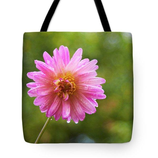 Pink Dahlia 1 Tote Bag