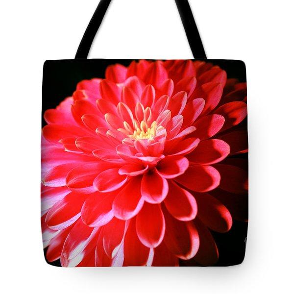 Pink Dahlia1 Tote Bag
