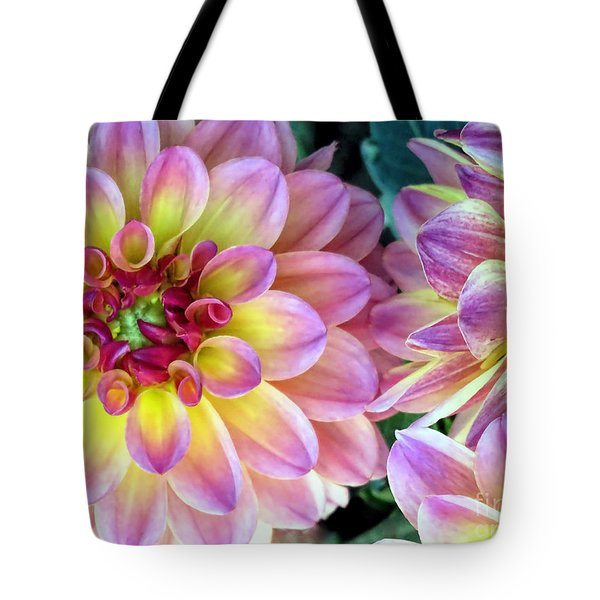 Pink Dahlias  Tote Bag by Janice Drew