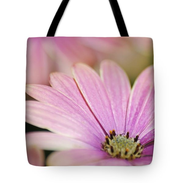Tote Bag featuring the photograph Pink Daisy by Ramona Whiteaker