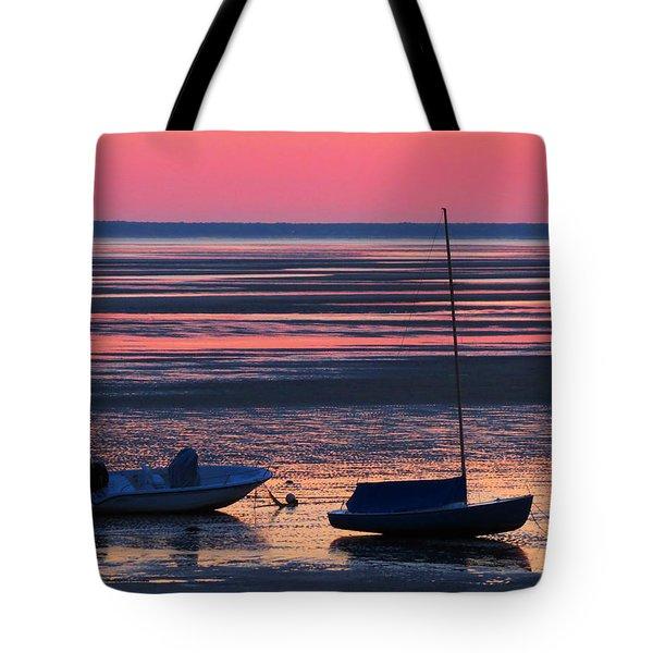 Pink Dawn Tote Bag by Dianne Cowen