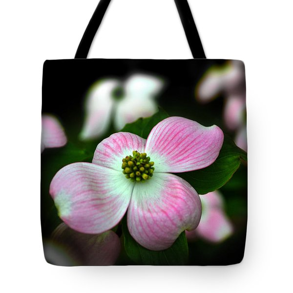 Pink Dogwood 003 Tote Bag