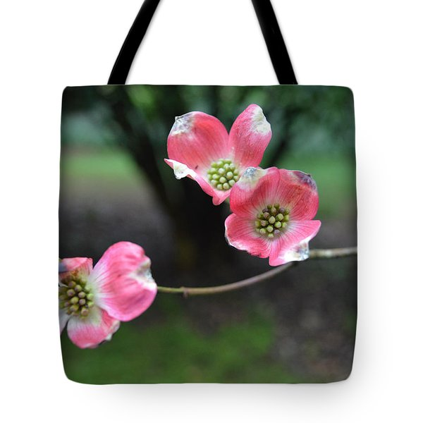 Tote Bag featuring the photograph Pink Dogwood by Linda Geiger