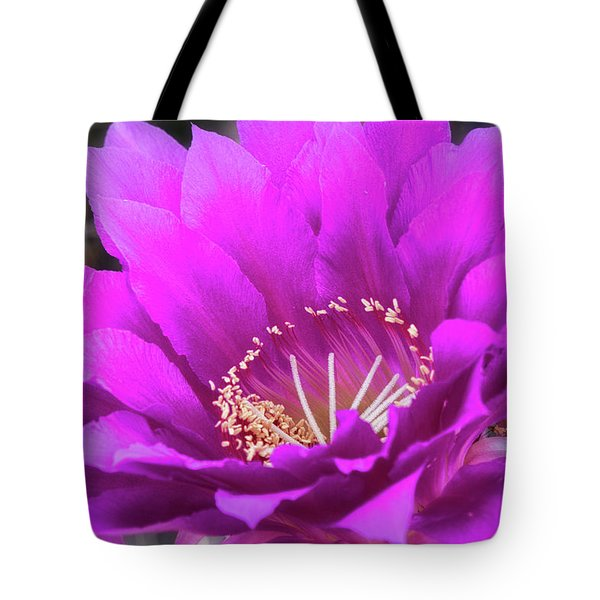 Tote Bag featuring the photograph Pink Echinopsis Bloom  by Saija Lehtonen