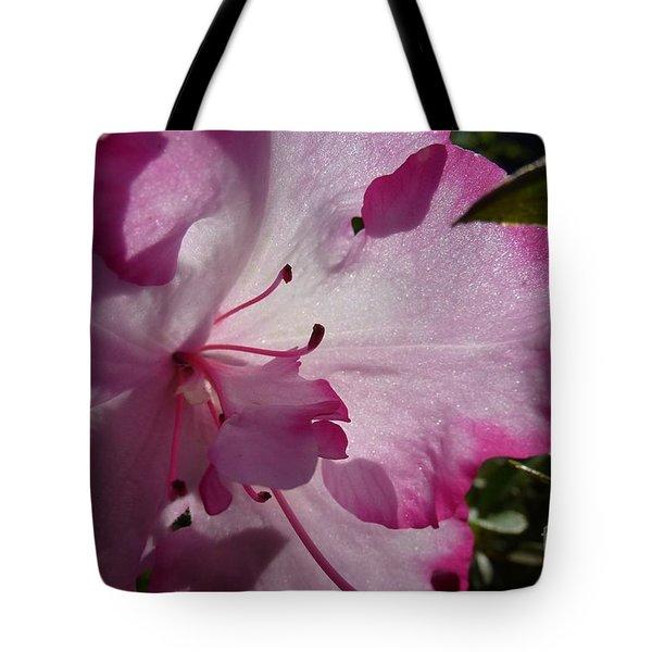 Pink Flowers 1 Tote Bag