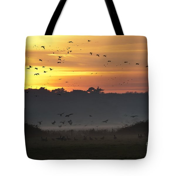 Pink Footed Geese At Holkham Norfolk Uk Tote Bag