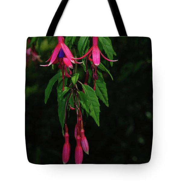 Tote Bag featuring the photograph Pink Fushia by Tikvah's Hope