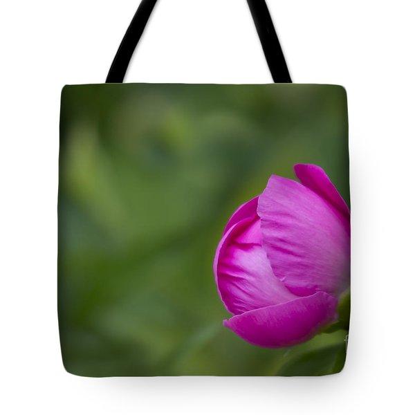 Pink Globe Tote Bag